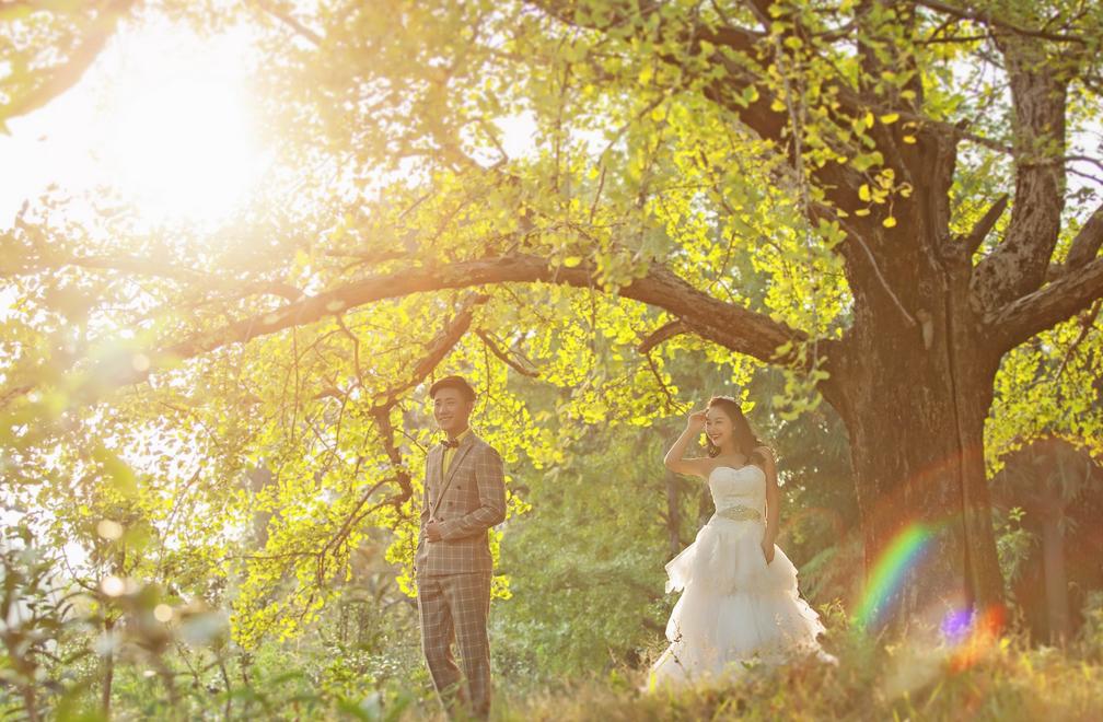 旅行结婚是怎么结的